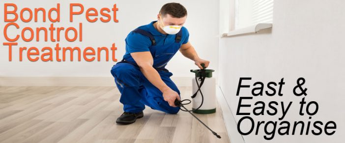 Bond Pest Control Treatment – End Of Lease Pest Control Service