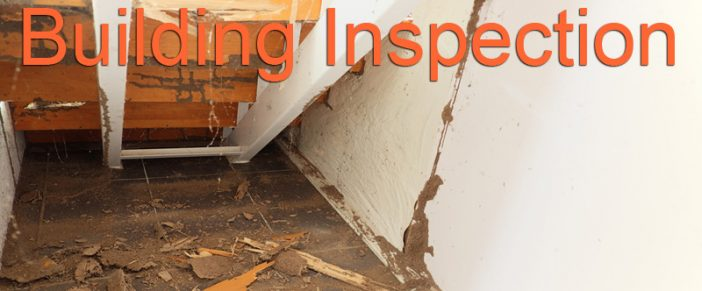 Building Inspection – Thorough Home Inspection Before You Buy