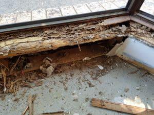 building and pest inspection brisbane