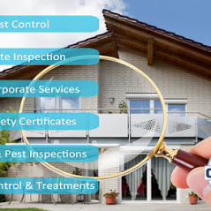 Building and Pest Inspections Brisbane- Gold Coast-Ipswich