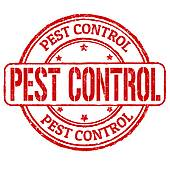 Best Pest Control and Termite Services