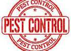 pest-control-stamp-vector-art_k18525873