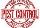 pest-control-stamp-vector-art_k18525873